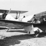 BeeGee-NR-11049